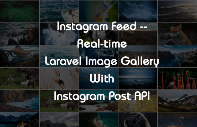 Instagram Feed – Create Real-time Laravel Image Gallery